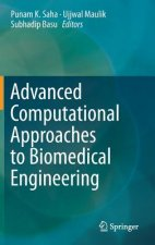 Advanced Computational Approaches to Biomedical Engineering, 1
