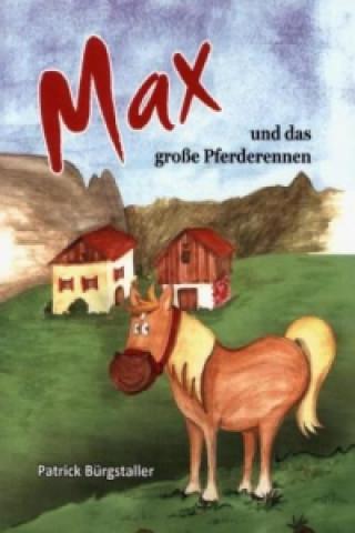 Max und das große Pferderennen