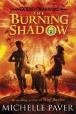 Burning Shadow (Gods and Warriors Book 2)
