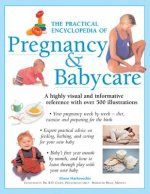 Practical Encyclopedia of Pregnancy & Babycare