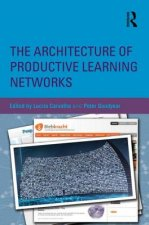 Architecture of Productive Learning Networks