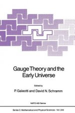 Gauge Theory and the Early Universe