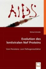 Evolution des lentiviralen Nef Proteins