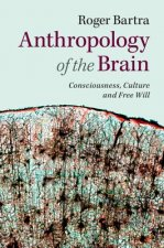 Anthropology of the Brain