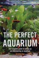 Perfect Aquarium