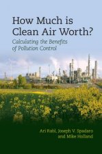 How Much Is Clean Air Worth?