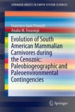 Evolution of South American Mammalian Carnivores during the Cenozoic: Paleobiogeographic and Paleoenvironmental Contingencies