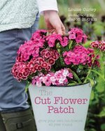Cut Flower Patch