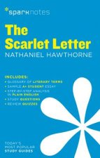 Scarlet Letter Sparknotes Literature Guide