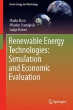 Renewable Energy Technologies: Simulation and Economic Evaluation