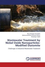 Wastewater Treatment by Nickel Oxide Nanoparticles-Modified Diatomite
