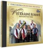 Malá muzika Nauše Pepíka - V tě krásné Šumavě - 1 CD