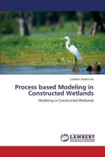 Process based Modeling in Constructed Wetlands