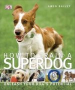 How to Train a Superdog