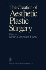 Creation of Aesthetic Plastic Surgery