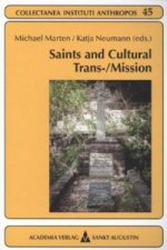 Saints and Cultural Trans-/Mission