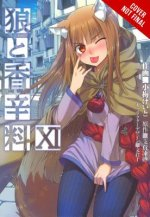 Spice and Wolf, Vol. 11 (light novel)