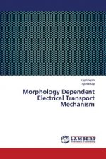 Morphology Dependent Electrical Transport Mechanism
