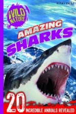 Explore Your World - Amazing Sharks