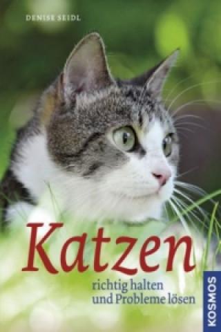 Katzen richtig halten und Probleme lösen