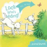 Look Who's Hiding: Animal Sounds
