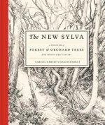 New Sylva