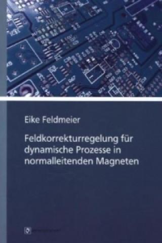 Feldkorrekturregelung für dynamische Prozesse in normalleitenden Magneten
