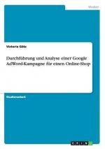 Durchfuhrung und Analyse einer Google AdWord-Kampagne fur einen Online-Shop