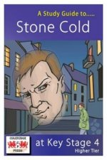 Study Guide to Stone Cold for GCSE