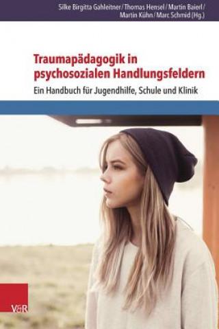 Traumapadagogik in Psychosozialen Handlungsfeldern