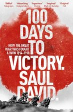 100 Days to Victory: How the Great War Was Fought and Won 19