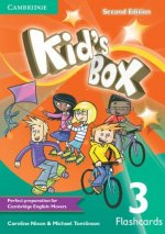 Kid's Box Level 3 Flashcards (pack of 109)
