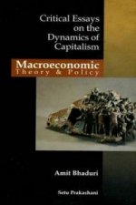 Macroeconomic Theory & Policy Critical Essays on the Dynamic