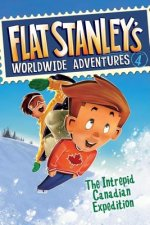Flat Stanley's Worldwide Adventures, Book 4