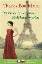 Malé básně v próze/Petits poémes en prose