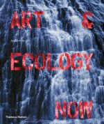 Art and Ecology Now