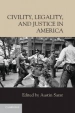 Civility, Legality, and Justice in America