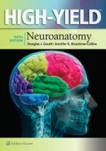 High-Yield (TM) Neuroanatomy
