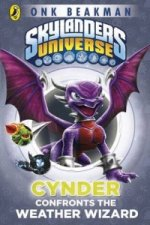 Skylanders Mask of Power: Cynder Confronts the Weather Wizar