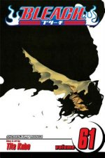 Bleach, Vol. 61