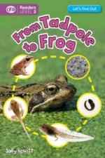 Let's Find Out: Tadpole to Frog