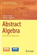 An Invitation to Abstract Algebra via Applications
