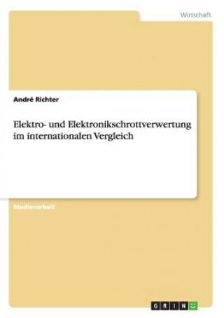 Elektro- und Elektronikschrottverwertung im internationalen Vergleich
