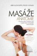 MASÁŽE Anatomie