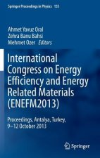 International Congress on Energy Efficiency and Energy Related Materials (ENEFM2013), 1