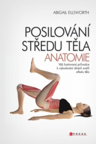 Posilování středu těla Anatomie