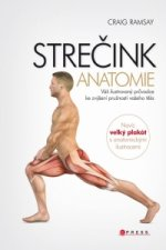 STREČINK Anatomie