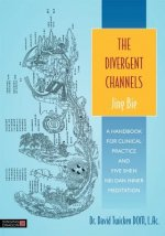 Divergent Channels - Jing Bie