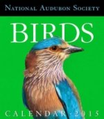 National Audubon Society Birds Page-A-Day Gallery Calendar
