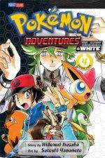 Pokemon Adventures: Black and White, Vol. 4